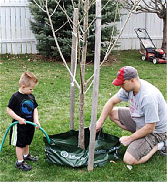 Ooze Tube Watering System, 15 Gallons - Tree Watering Bag System