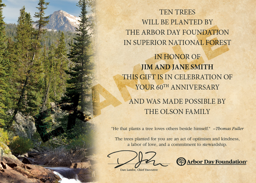 Trees in Celebration Sample Certificate